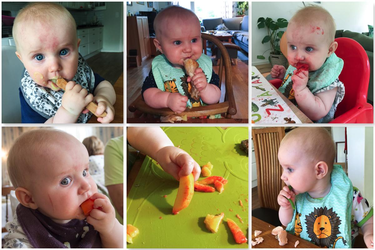 Collage med BLW-bebis